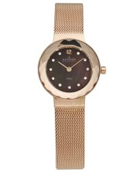 456SRR1 Skagen Ladies Watch